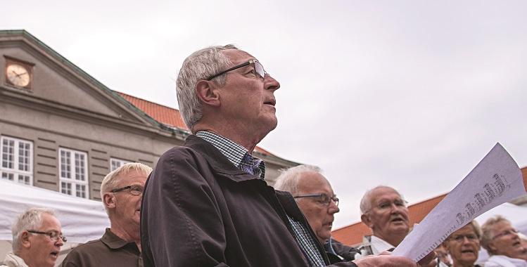 Sansefestivalen er en fødevarefestival, som i 2014 finder sted den 6. – 9. august 2014. Den 9. august kulminerer festivalen med et stort fødevaremarked i Struer midtby og havneområde.
