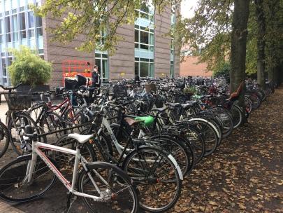 Mellem træerne skal der opstilles stativer til forhjulsparkering, som det ses på billedet til højre, som er fra Odense Banegård. (Foto: Louise Bruun Ploughmand)
